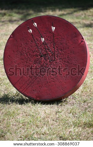 Historical medieval archery target on a warrior show - stock photo