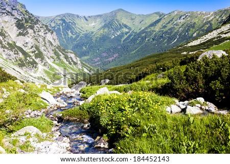 Hlinska Valley, Vysoke Tatry (High Tatras), Slovakia - stock photo