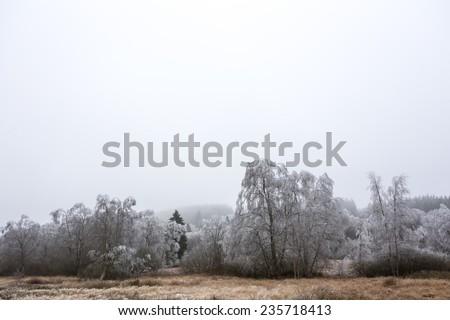 hoarfrost winter landscape - stock photo