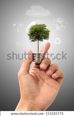 hold lamp of tree,Conserve tree and save energy concept - stock photo