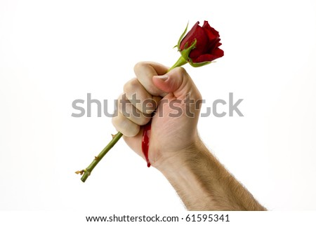 Holding a red rose tightly - stock photo