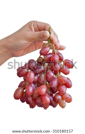 Holding red grapes isolated on a white background. - stock photo