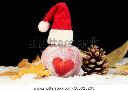 Holiday apple with frosted drawing in snow on black background - stock photo