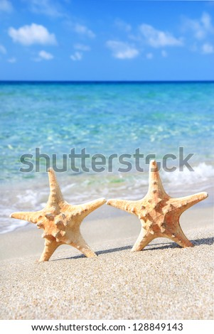 holiday concept - two sea-stars walking on sand beach against waves background - stock photo