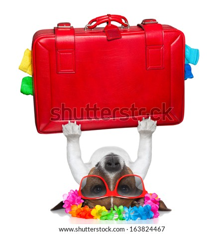 holiday dog lifting a big red suitcase for holidays - stock photo