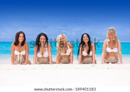 Holiday Paradise - stock photo