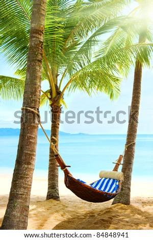 Holidays. Empty hammock between palm trees - stock photo