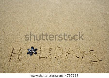 holidays written in the sandy beach - stock photo