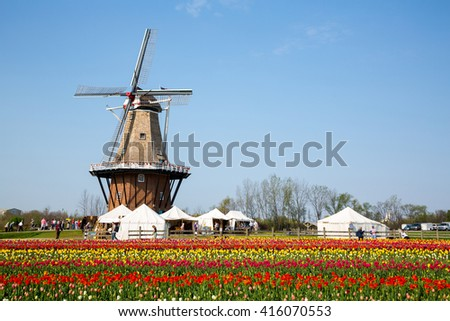 HOLLAND, MICHIGAN-MAY 07, 2015: An authentic wooden windmill from the Netherlands rises behind a field of tulips in Holland Michigan at Springtime. - stock photo