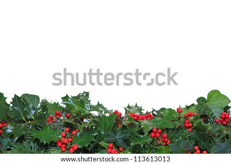 Holly with red berries, ivy and evergreen leaves arranged as a footer against a white background. - stock photo