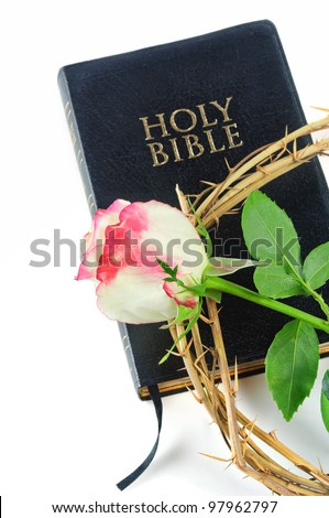holy bible and crown of thorns with  rose isolated on white background - stock photo