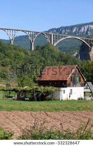 Home and arched Tara Bridge over green Tara Canyon. Zabljak, Montenegro. - stock photo