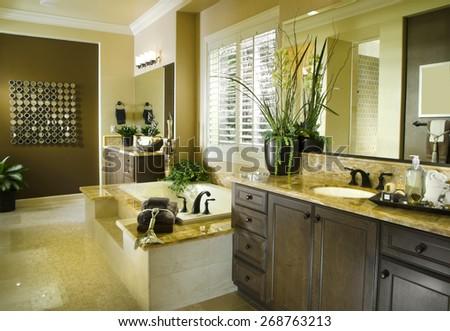 Home Bath room Interior Design House Architecture - stock photo