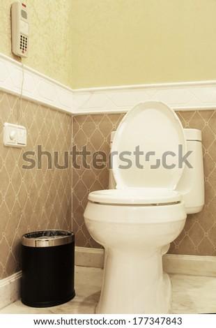 Home flush toilet (toilet bowl, paper) - stock photo