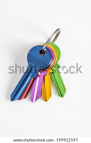 home keychains - stock photo