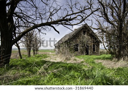 Home that has been abandoned and run down.All the trees have all died grass is over grown. - stock photo