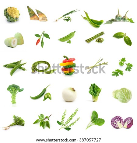 Homegrown vegetable collection - stock photo