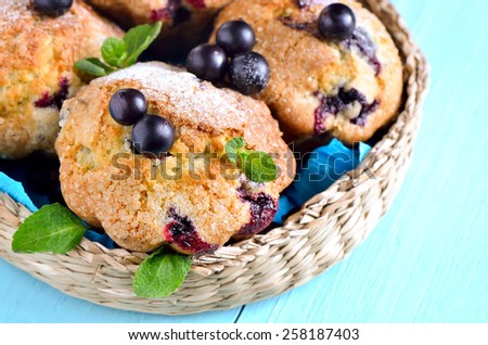 Homemade black currant muffins with delicious sugar baked crust - stock photo