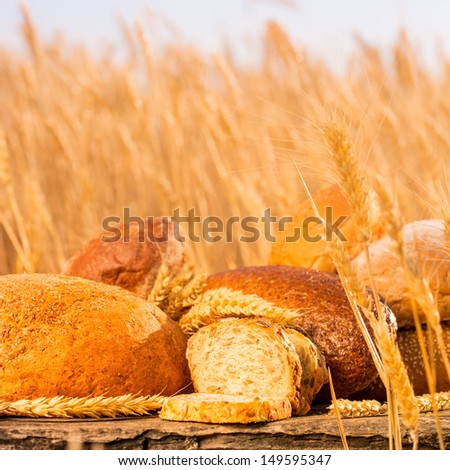 Homemade bread and wheat on the wooden table in autumn field - stock photo