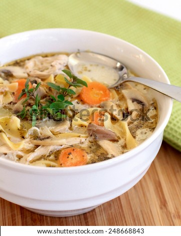 Homemade chicken noodle soup - stock photo