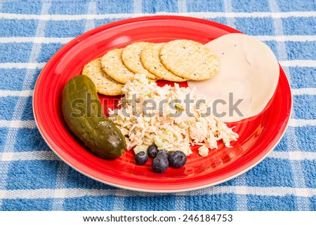 Homemade chicken salad on a red plate with crackers provolone cheese, a pickle and blueberries - stock photo