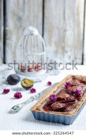 Homemade chocolate and coconut cake with plums on a white wooden background - stock photo