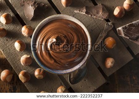 Homemade Chocolate Hazelnut Spread on a Background - stock photo