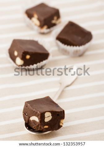 Homemade Chocolate with hazelnut on the spoon - stock photo