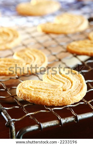 Homemade cookies on a cooling rack.  Very shallow D.O.F - biscuit in the front are in focus, background out of focus. - stock photo