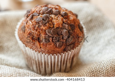 Homemade dark muffin with a chocolate chips - stock photo