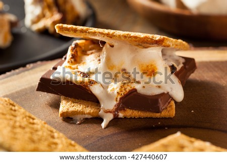 Homemade Gooey Marshmallow S'mores with Chocolate - stock photo