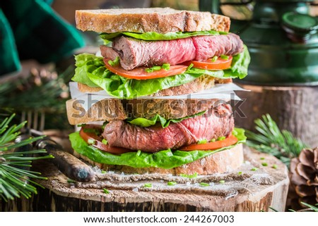 Homemade hamburger with beef, lettuce and tomato - stock photo