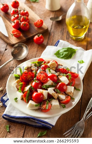 Homemade Healthy Caprese Salad with Tomato Mozzarella and Basil - stock photo