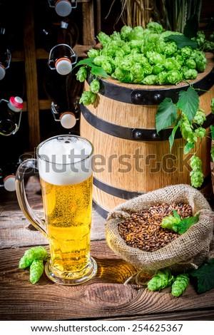 Homemade light beer - stock photo