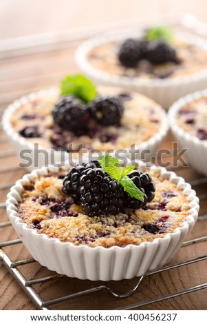 Homemade mini tarts with fresh berries -  blueberries, currants and blackberries on wooden background, selective focus - stock photo