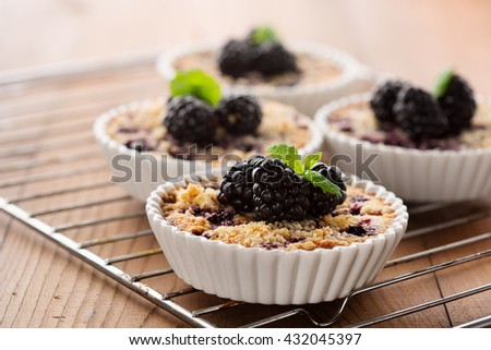 Homemade mini tarts with fresh berries -  blueberries, currants and blackberries on wooden rustic background, selective focus. Summer time - stock photo