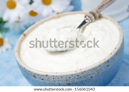 homemade natural yoghurt in a bowl, close-up, horizontal - stock photo