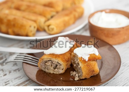 Homemade pancakes stuffed with meat - stock photo