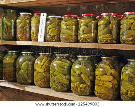Homemade pickled cucumbers in glass jars on cellar shelves        - stock photo