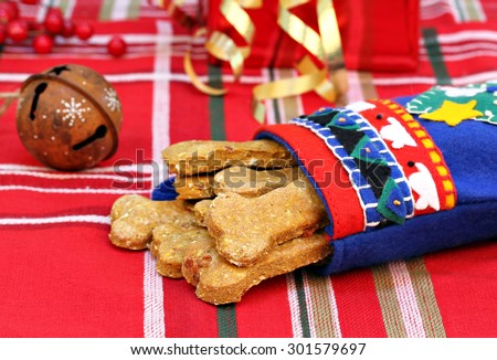 Homemade pumpkin, bacon dog biscuits in a handmade Christmas stocking.  Christmas present for the dog. - stock photo