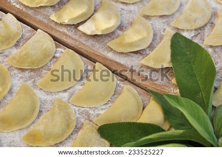 homemade ravioli rows on a board and sage - stock photo