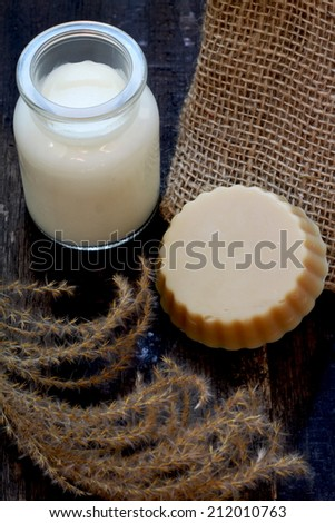 Homemade soap with goat milk - stock photo