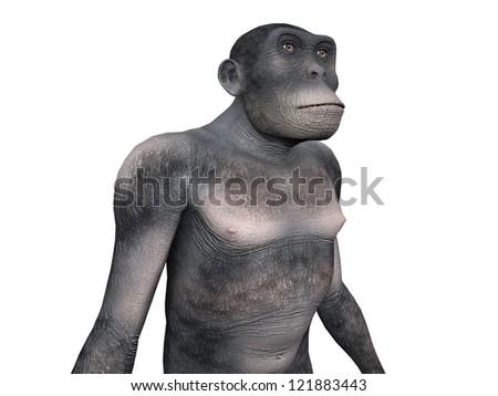 Homo Habilis - Human Evolution Computer generated 3D illustration - stock photo