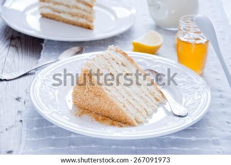 Honey cake with vanilla cream (Russian Honey Cake Medovik) - stock photo