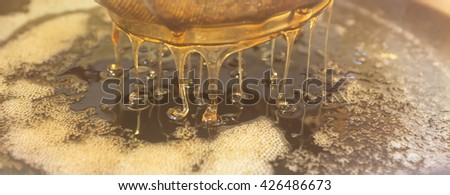 Honey from the hive making in honeycombs  - close up of honey making process - stock photo