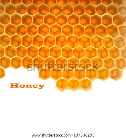 Honey macro in comb texture pattern background. - stock photo