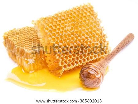 Honeycomb and honey dipper on a white background.  High-quality picture. - stock photo