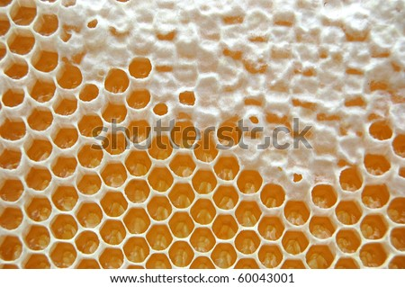 Honeycomb filled with honey partly stuck with beeswax - stock photo