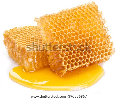 Honeycomb on a white background.  High-quality picture. - stock photo