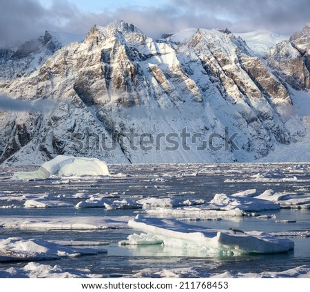 Hooded seal on sea ice and dramatic landscape of Davy Sound in King Oscars Fjord on the east coast of Greenland - stock photo